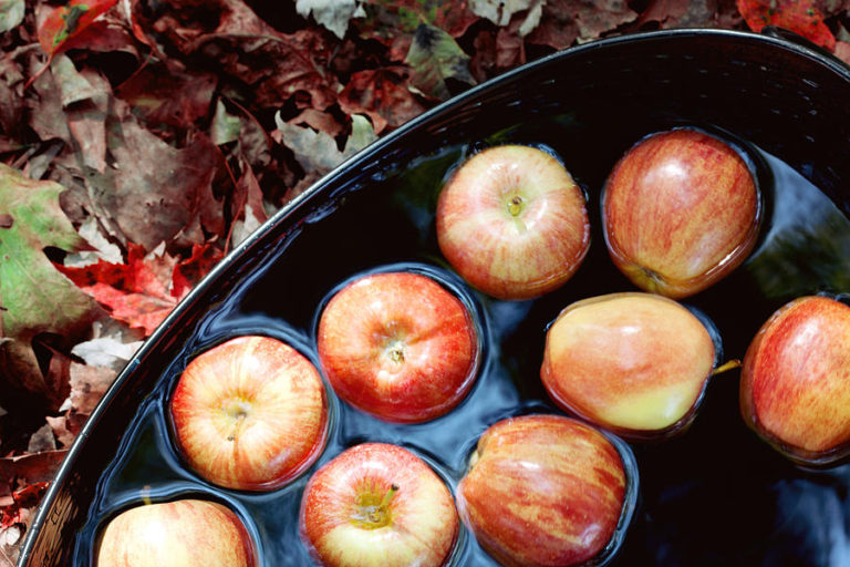 Bobbing for apples is very similar, but the apples are inside a basin of water.
