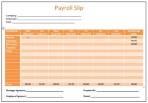 The differences between Pay Slip and Payroll